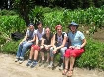 Les 5 filles