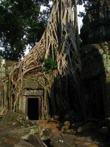 Temple de Angkor