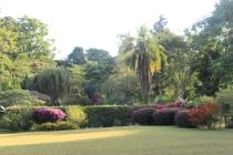 Jardin de Marika