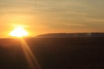 Lever du soleil sur la savane