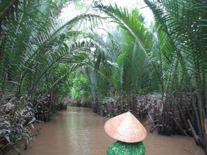 Canal vers l'ile de la noix de coco