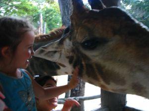 Céleste et sa giraffe