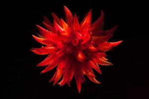 Red Blob Chandelier