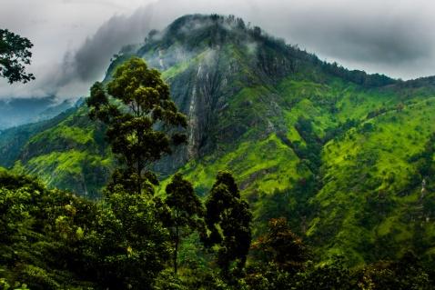 Vue magnifique - Little Adams Peak
