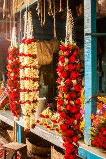 Fleurs pour les offrandes