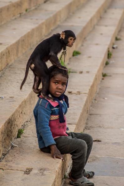 Enfant et son singe